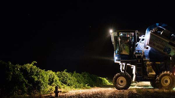 Harvest 2018: Spain and Portugal