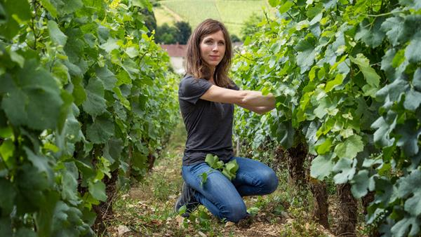Five questions with Winemaker Caroline Frey
