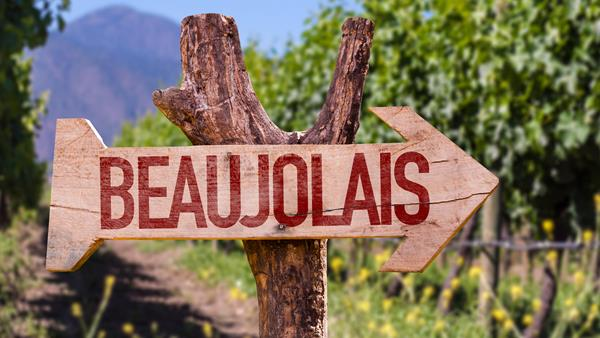 Beautiful Bojo... falling in love with Beaujolais all over again