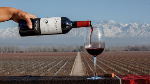 Catena Zapata awarded 'World's Most Admired Wine Brand 2020'